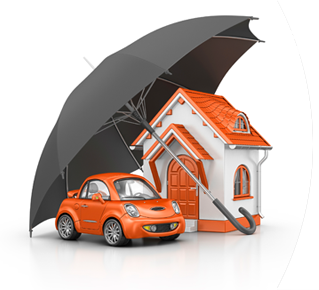 St. Petersburg, FL Homeowners Insurance